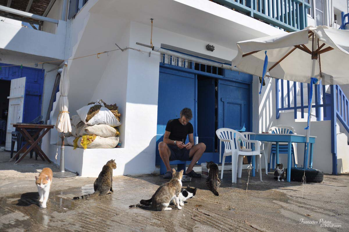 Milos. Pescatore che cura il pesce a Klima