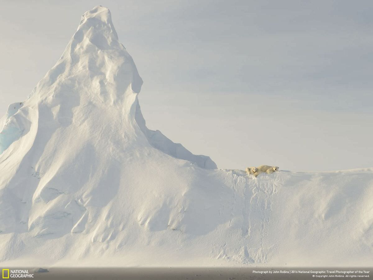The location is on the sea ice in Davis Straight, off the coast of Baffin Island in the Canadian Arctic, on April 2, 2016. This mother polar bear and her yearling are perched atop a huge snow-covered iceberg that got socked in when the ocean froze over for the winter. To me, the relative smallness of these large creatures when compared to the immensity of the iceberg in the photo represents the precariousness of the polar bear's reliance on the sea and sea ice for its existence. | CATEGORY: Nature