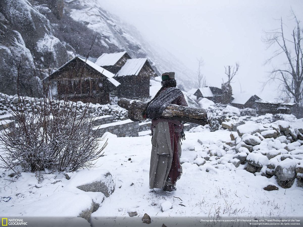 An old woman in a remote village in Himachal Pradesh, India, carries a big log back home to warm up her house. | CATEGORY: People