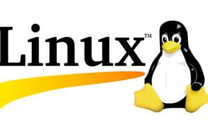 Linux logo without version number banner sized
