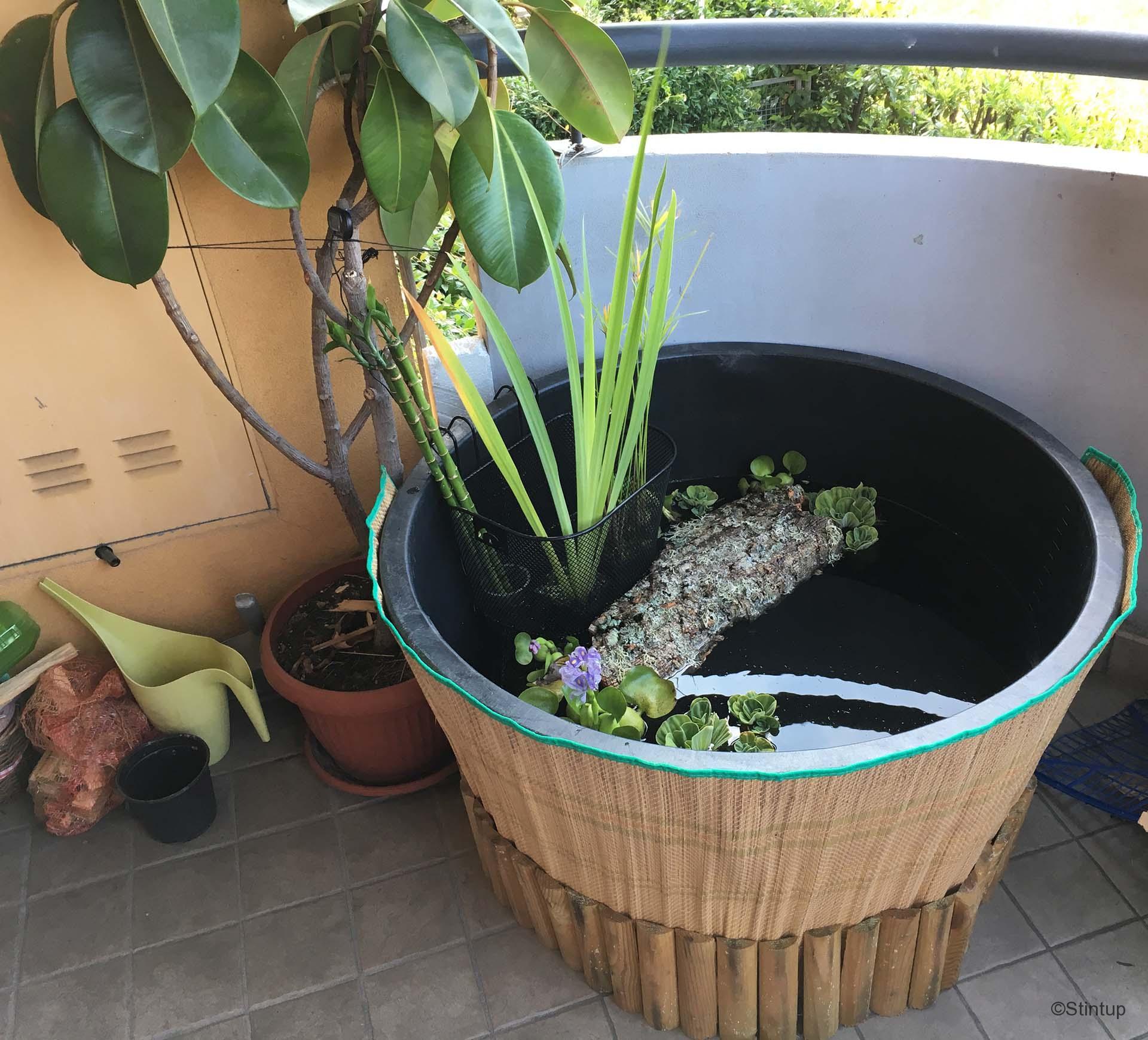 Mini Laghetto Per Terrazzo come costruire un bonsai pond in terrazza (anche per pesci e