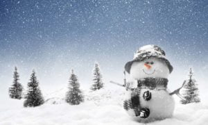 Winter Snowman Beautiful Snowfall Image
