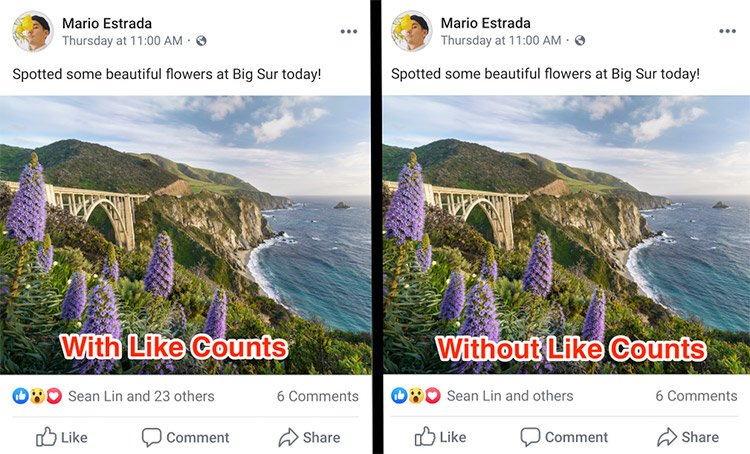 numero mi piace Instagram Facebook