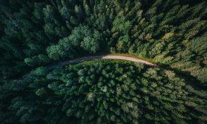 Riforestazione Parco Italia Amazon